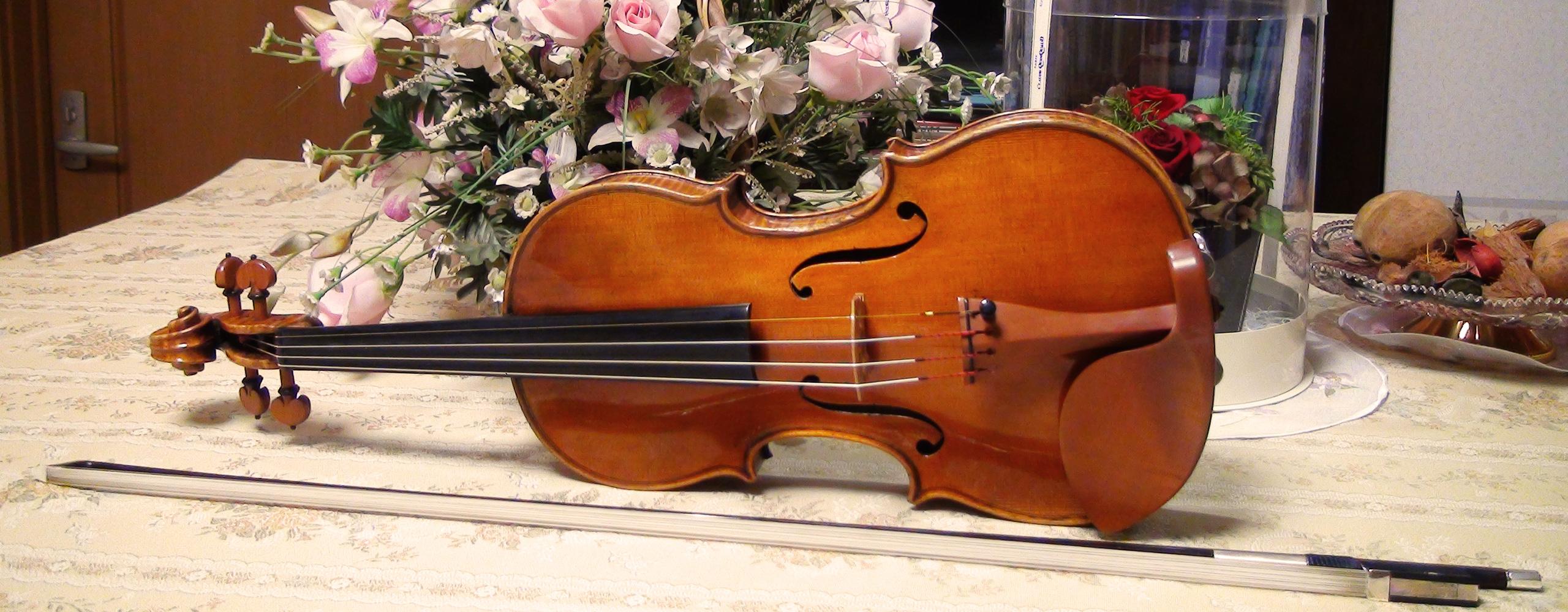 茨城県龍ヶ崎市にあるヴァイオリン教室です。指導者は山中尚美。